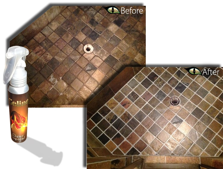 Shower Travertine Slate Marble polishing sealing renewal color sealing