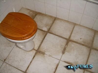 Ultimate tile Grout Cleaner - pFOkUS