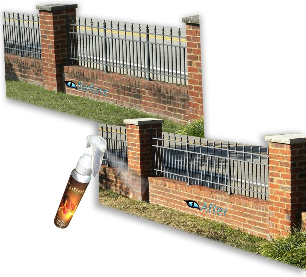 Brick-Stairs-Efflorescence-Removal- and brick sealer