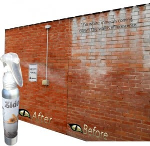 Best Brick Efflorescence Cleaner and Remover - Zido