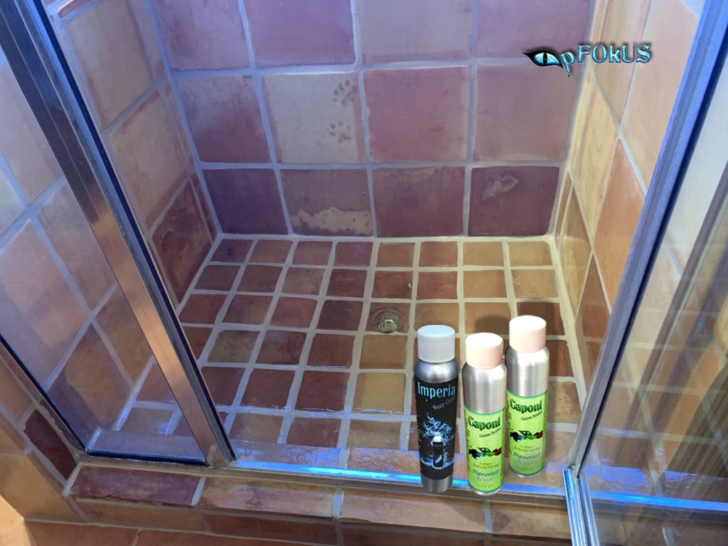 Grout sealing and Grout cleaning - pFOkUS