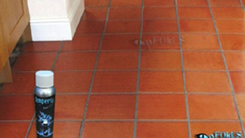 Terracotta Floor Tile Cleaning and Maintenance