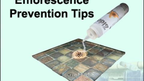 Efflorescence: Effective Removal and Prevention Tips